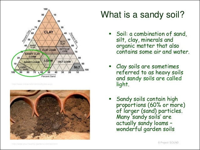 Gardening on sand 2009a for What soil contains