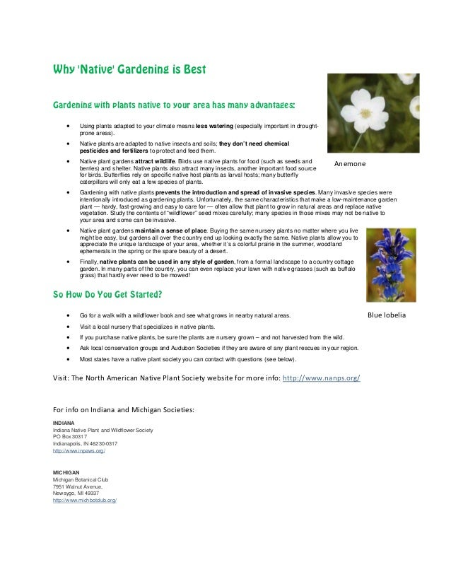 Why Native Gardening is BestGardening with plants native to your area has many advantages:     •     Using plants adapted ...