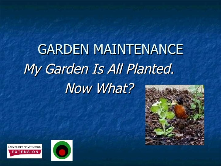 GARDEN MAINTENANCE My Garden Is All Planted. Now What?