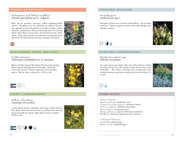Garden Smart Colorado: A Guide to Non-Invasive Plants for