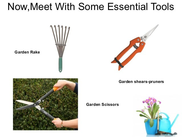 Great 4. Now,Meet With Some Essential Tools Garden ...