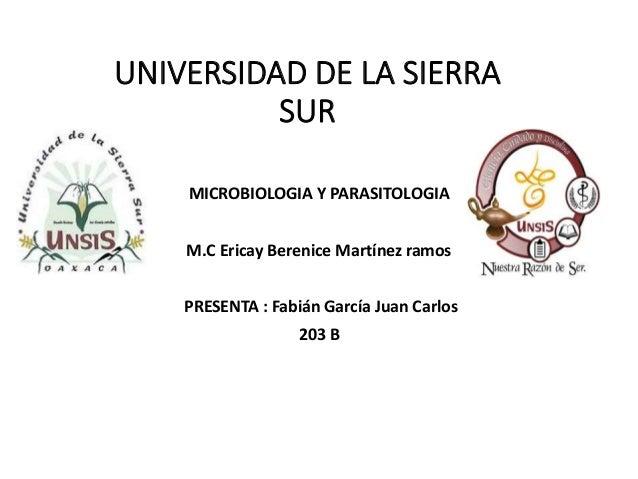 UNIVERSIDAD DE LA SIERRA SUR MICROBIOLOGIA Y PARASITOLOGIA M.C Ericay Berenice Martínez ramos PRESENTA : Fabián García Jua...