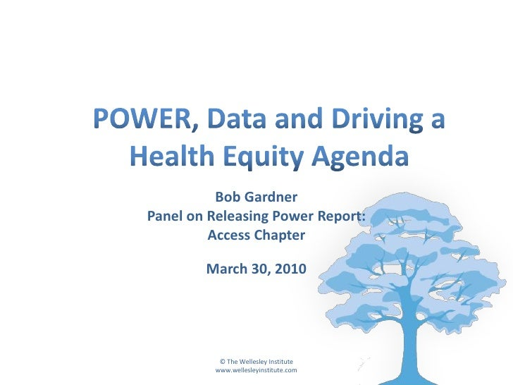 Bob Gardner Panel on Releasing Power Report:          Access Chapter          March 30, 2010                © The Wellesle...