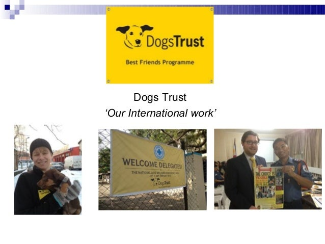 Dogs Trust'Our International work'