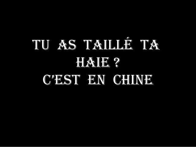 Tu as Taillé Ta haie ? C'esT en Chine