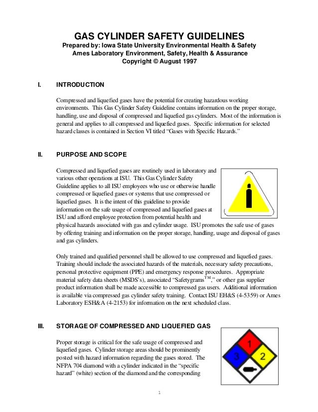 GAS CYLINDER SAFETY GUIDELINES         Prepared by: Iowa State University Environmental Health & Safety            Ames La...