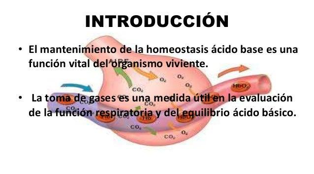INTRODUCCIÓN • El mantenimiento de la homeostasis ácido base es una función vital del organismo viviente. • La toma de gas...