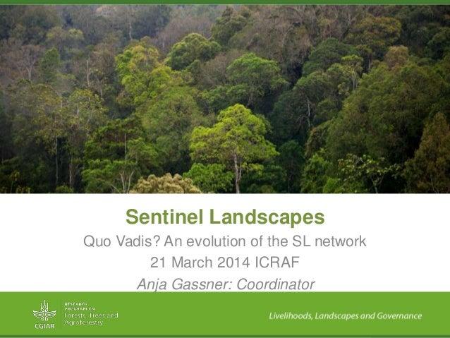 Sentinel Landscapes Quo Vadis? An evolution of the SL network 21 March 2014 ICRAF Anja Gassner: Coordinator