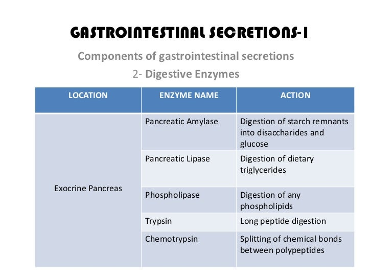 digestive enzymes and their functions essay Understand the human digestive system, all its parts and functions  stomach,  bowels) for the action of different complementary digestive enzyme systems.