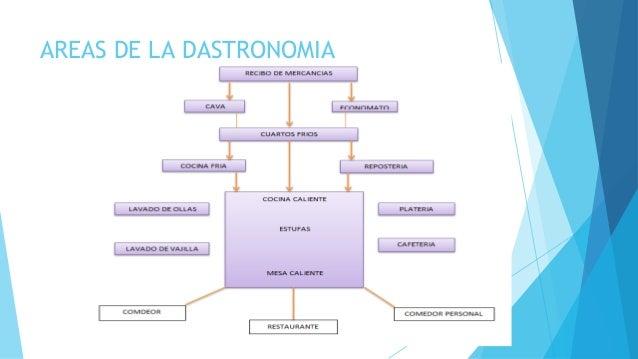 AREAS DE LA DASTRONOMIA