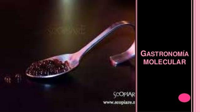 Gastronomia y cocteleria molecular for Cocina molecular historia