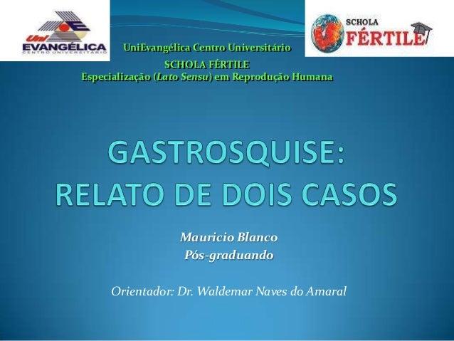 UniEvangélica Centro Universitário                 SCHOLA FÉRTILEEspecialização (Lato Sensu) em Reprodução Humana         ...