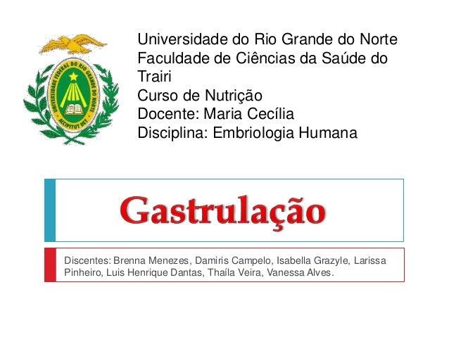 Universidade do Rio Grande do Norte Faculdade de Ciências da Saúde do Trairi Curso de Nutrição Docente: Maria Cecília Disc...