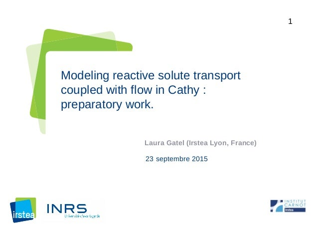 1 Modeling reactive solute transport coupled with flow in Cathy : preparatory work. Laura Gatel (Irstea Lyon, France) 23 s...