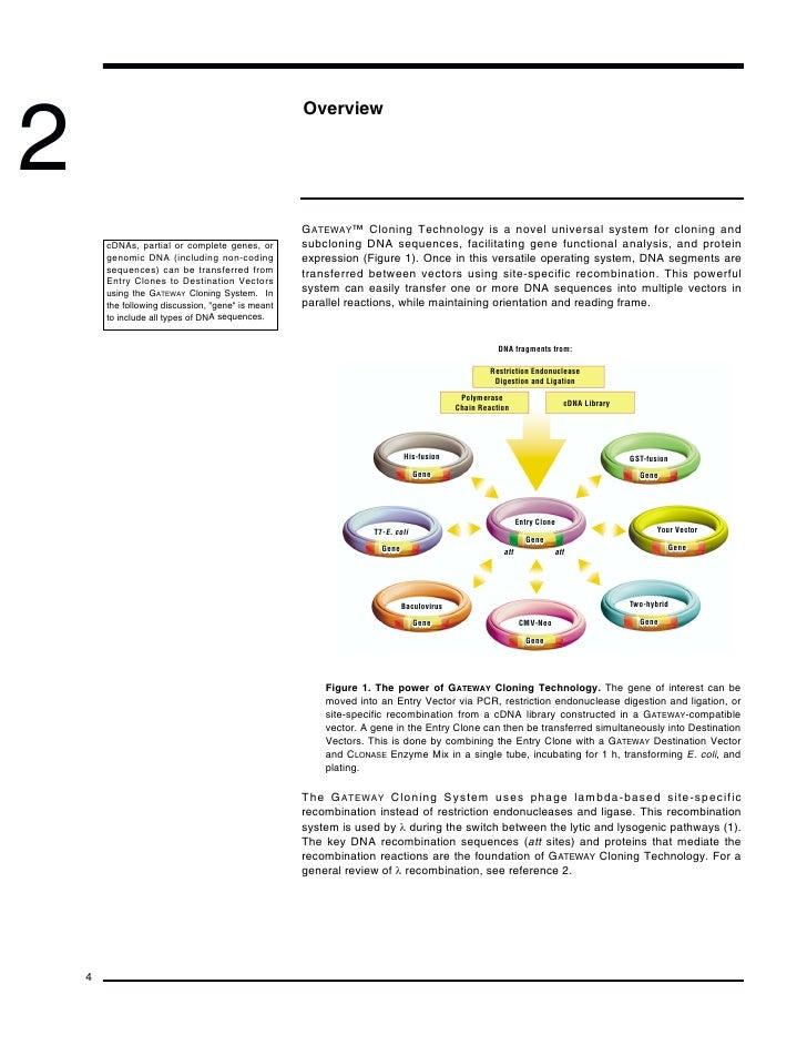 invitrogen gateway technology manual
