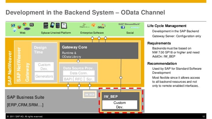 Development in the Backend System – OData Channel                                                                         ...