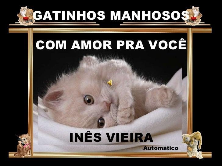 GATINHOS MANHOSOS COM AMOR PRA VOCÊ INÊS VIEIRA Automático