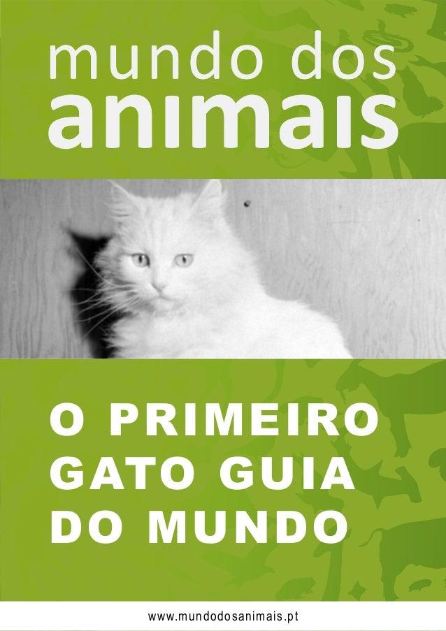 O PRIMEIRO GATO GUIA DO MUNDO www.mundodosanimais.pt