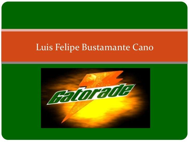 Luis Felipe Bustamante Cano