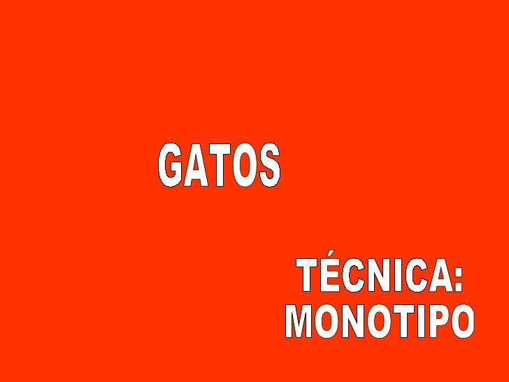 TÉCNICA: MONOTIPO GATOS