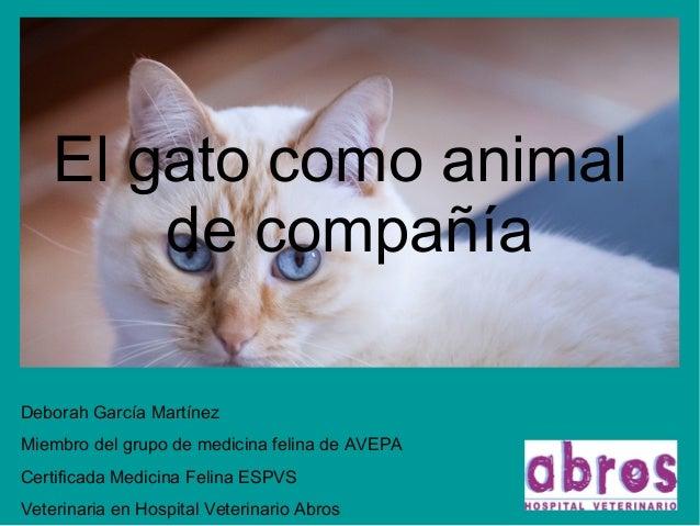 El gato como animal de compañía Deborah García Martínez Miembro del grupo de medicina felina de AVEPA Certificada Medicina...