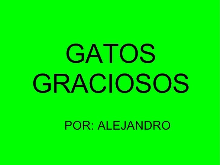 GATOS GRACIOSOS POR: ALEJANDRO