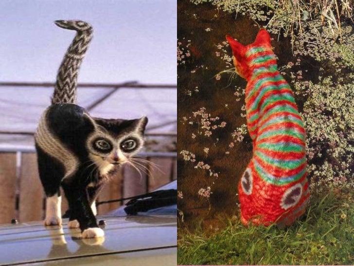 Gatos pintados Slide 1