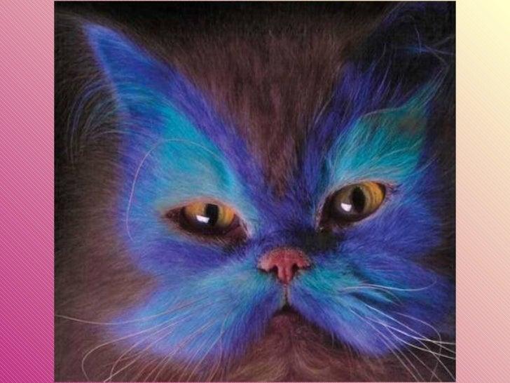 Gatos pintados Slide 4