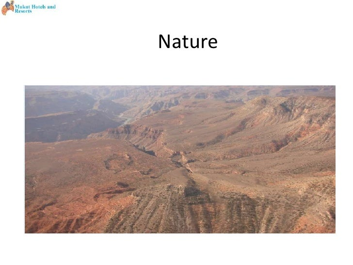 Nature <br />