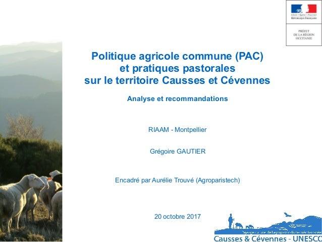 Politique agricole commune (PAC) et pratiques pastorales sur le territoire Causses et Cévennes Analyse et recommandations ...