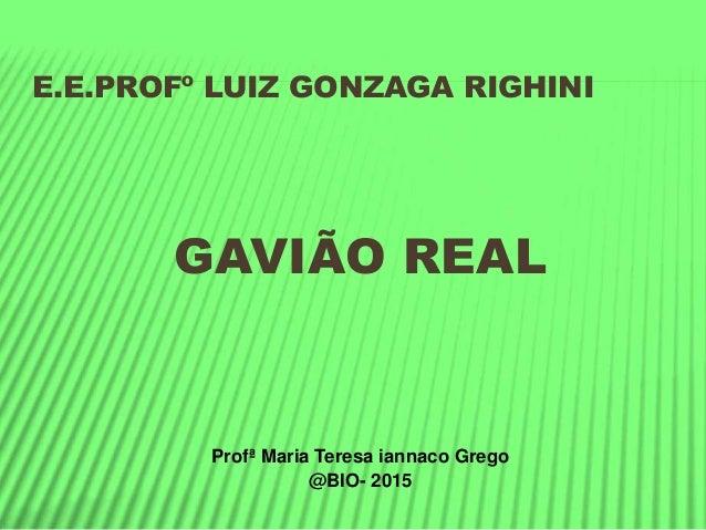 E.E.PROFº LUIZ GONZAGA RIGHINI GAVIÃO REAL Profª Maria Teresa iannaco Grego @BIO- 2015