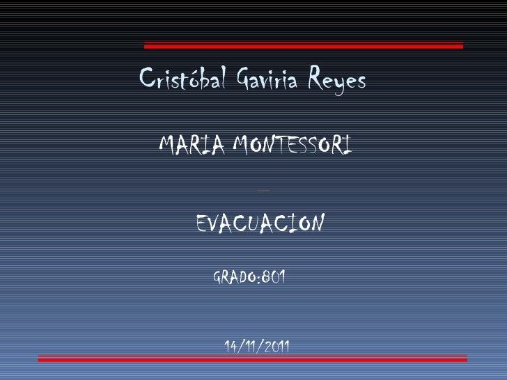 Cristóbal Gaviria Reyes  MARIA MONTESSORI EVACUACION   14/11/2011 GRADO:801