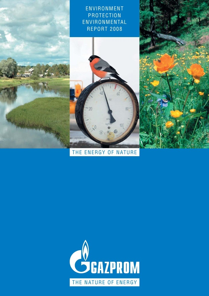 ENVIRONMENT      PROTECTION    ENVIRONMENTAL     REPORT 2008     THE ENERGY OF NATURE     THE NATURE OF ENERGY