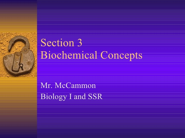 Section 3 Biochemical Concepts  Mr. McCammon Biology I and SSR