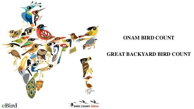ONAM BIRD COUNT GREAT BACKYARD BIRD COUNT
