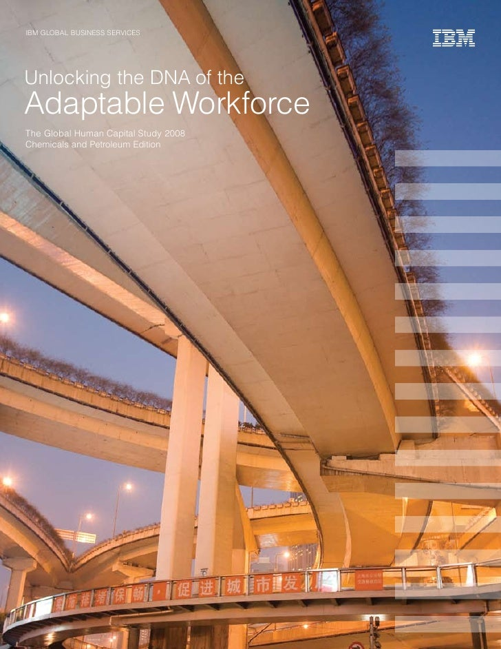 IBM GLOBAL BUSINESS SErvICES     Unlocking the DNA of the Adaptable Workforce The Global Human Capital Study 2008 Chemical...
