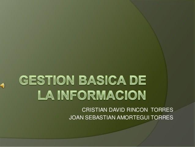 CRISTIAN DAVID RINCON TORRESJOAN SEBASTIAN AMORTEGUI TORRES