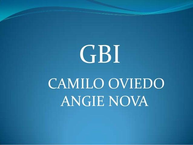 GBICAMILO OVIEDO ANGIE NOVA