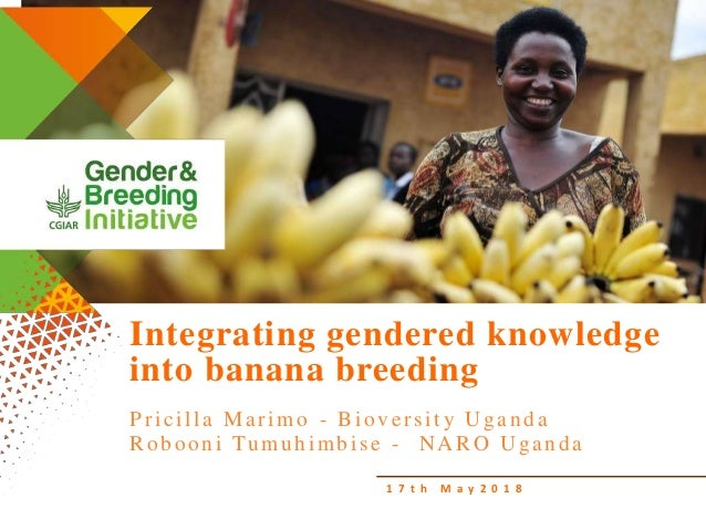 1 7 t h M a y 2 0 1 8 Integrating gendered knowledge into banana breeding Pricilla Marimo - Bioversity Uganda Robooni Tumu...
