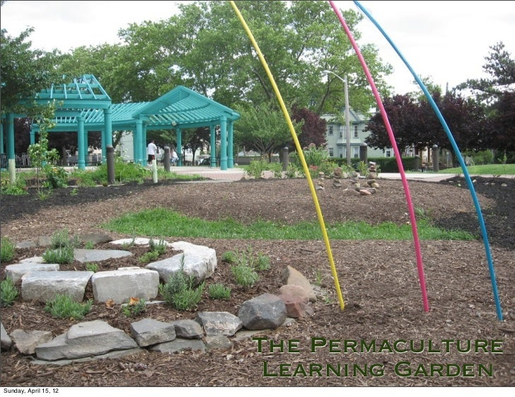The Permaculture                        Learning GardenSunday, April 15, 12