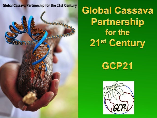 A Global Alliance For the Improvement of Cassava Developing a Global Vision for Cassava
