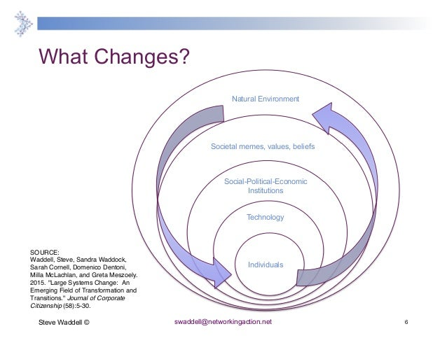 change for the audacious a doers guide to large systems change for flourishing futures