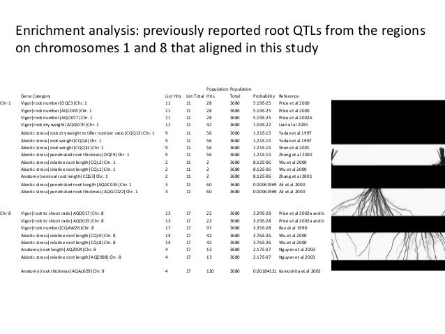 Enrichment analysis: previously reported root QTLs from the regions on chromosomes 1 and 8 that aligned in this study Gene...