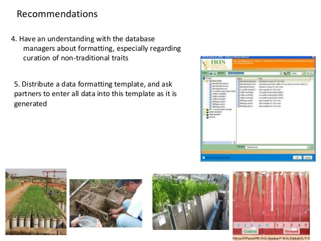 Recommendations 4. Have an understanding with the database managers about formatting, especially regarding curation of non...