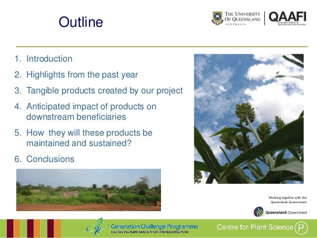 GRM 2013: Developing drought-adapted sorghum germplasm for Africa and Australia -- A Borrell Slide 2