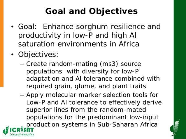 GRM2013: Establishing a molecular breeding program based on the aluminum tolerance gene AltSB and the P efficiency QTL Pup-1, for increasing sorghum production in Sub-Saharan Africa -- F Rattunde  Slide 2
