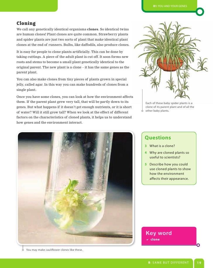 Aqa biology gcse coursework