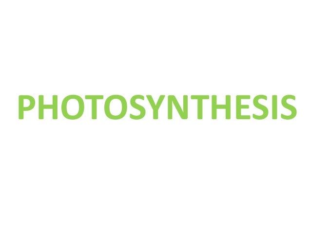 Gcse aqa biology unit 2 photosynthesis 13 fandeluxe Gallery