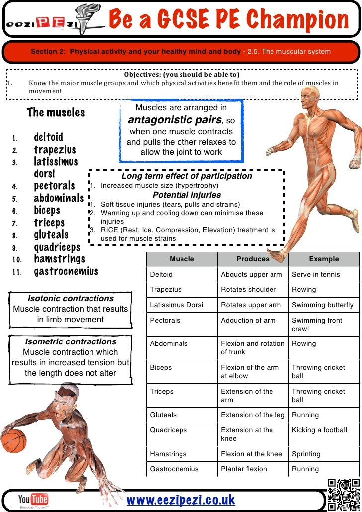 gcse pe coursework ocr Gcse pe split into 4 different unitsunits are b451, b452, b453 and b454 overview of the course unit b451 an introduction to physical education 1 hour/60 marks.