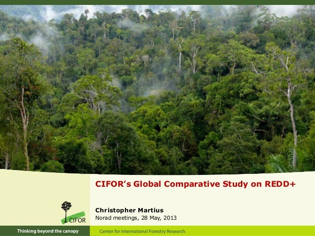 CIFOR's Global Comparative Study on REDD+ Christopher Martius Norad meetings, 28 May, 2013
